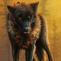 Wolf Speedpaint
