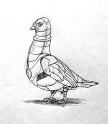 Rust Pigeon