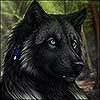 avatar of DarkIceWolf