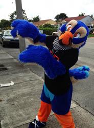 Bird got bod! B)