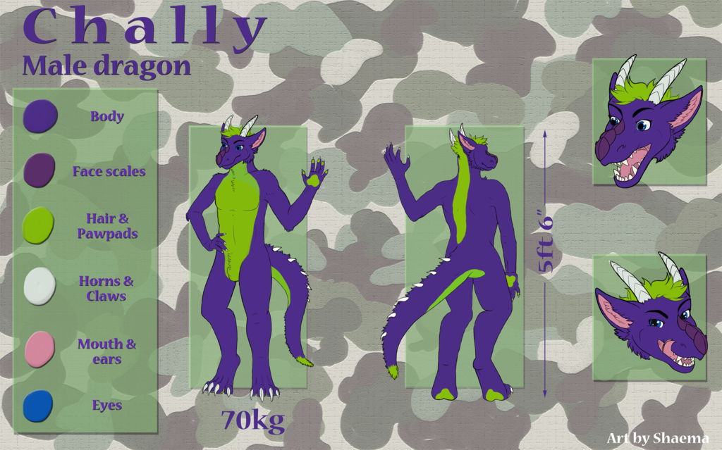 Most recent image: Comm. Chally Ref Sheet