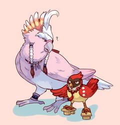 birdie allmates