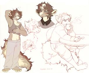 Sketchpage for Omne