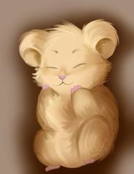 Fluffy buddy