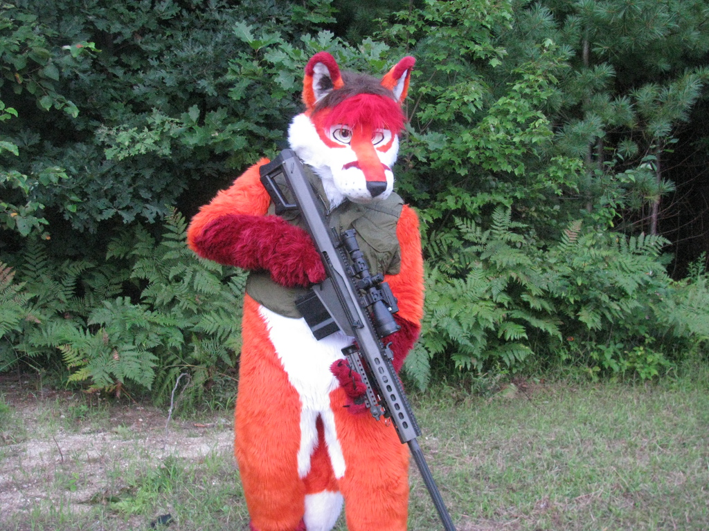 Most recent image: Fawks posing with the Barret