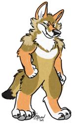 Big buff coyote puff
