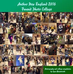 Anthro New England 2016 Fursuit Photo Collage