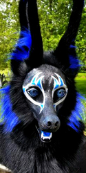 Blue and silver Egyptian Jackal!