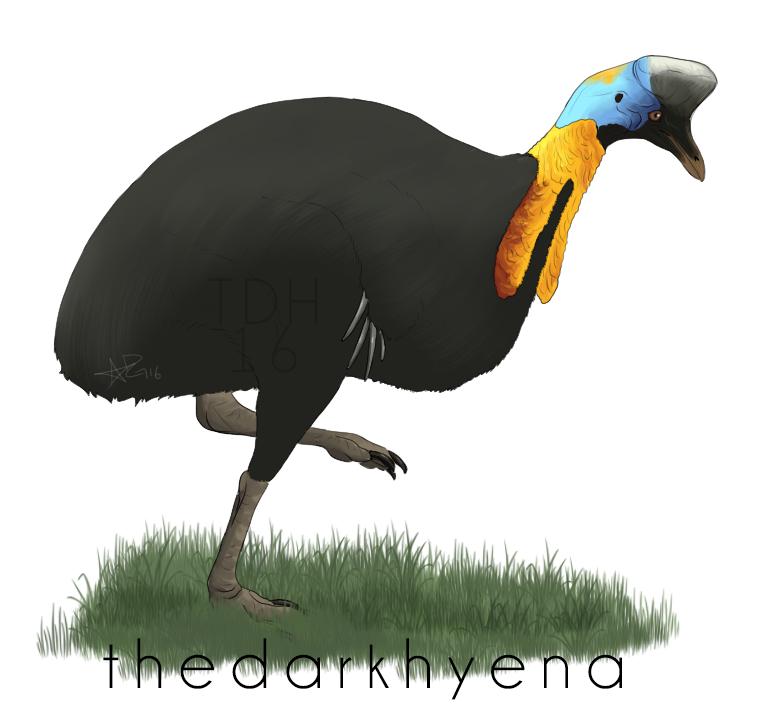 Decembird 6