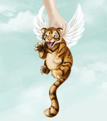 A little winged tiger