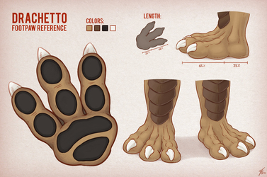 Drachetto Footpaw Reference