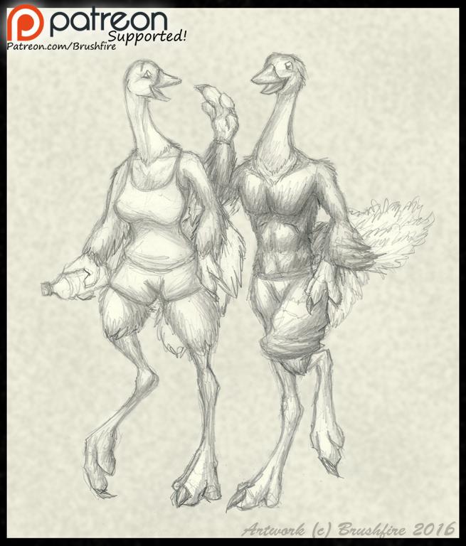 Ostrich Sketch Prize