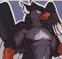 Sold. Gryphon Boi