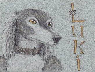 Luki Traditional Badge