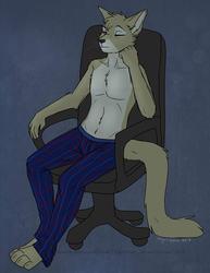 The Cat's Pajamas, by Nauro