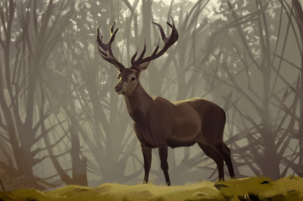 Yet Another Deer