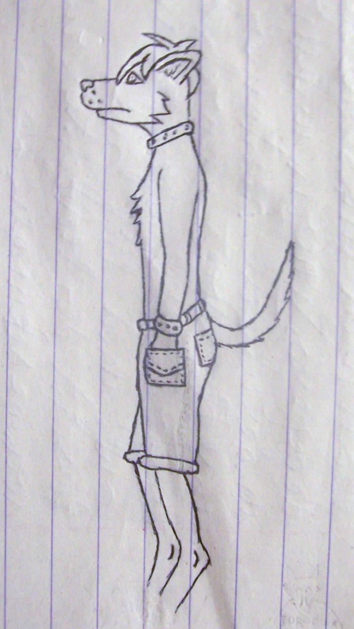 Chippo sketch (April, 2010)