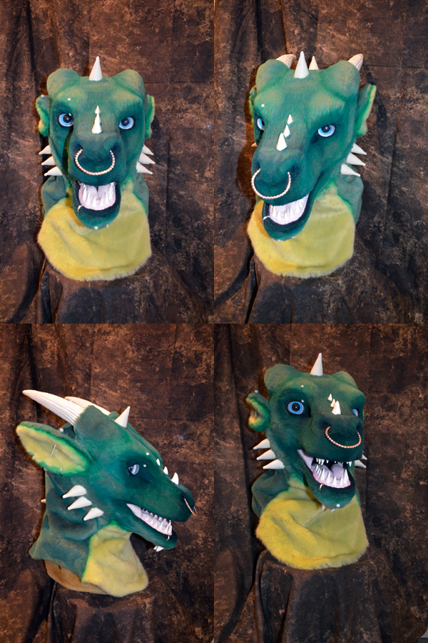 Draco the Dragon Head