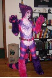 Cheshire Cat V2.0