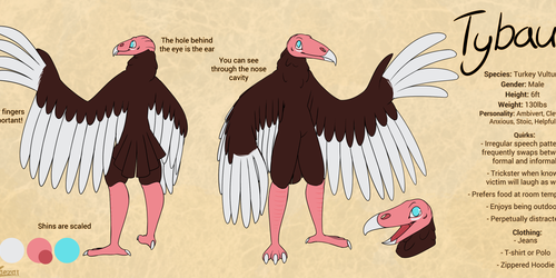 Character Reference of Tybault