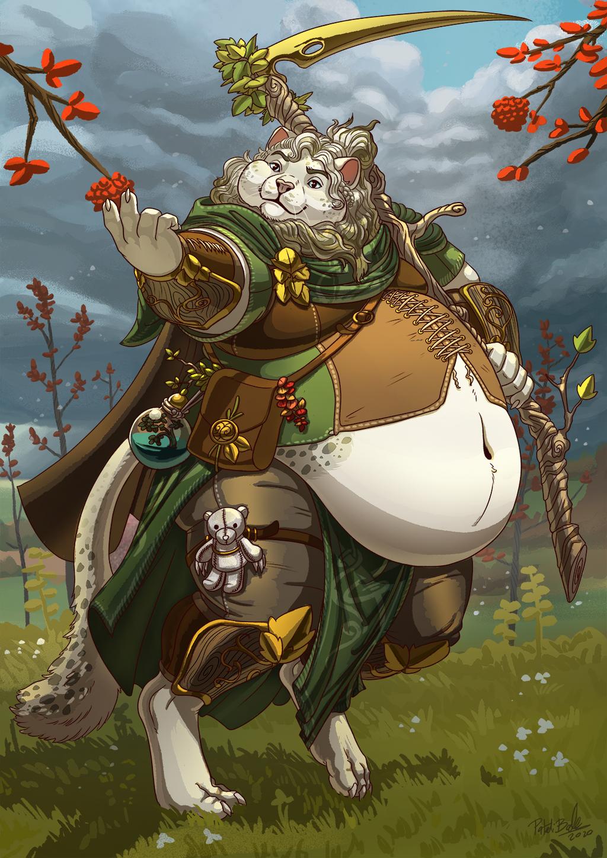 Choose Your Class: Druid