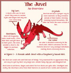 Introducing: The Juvel!