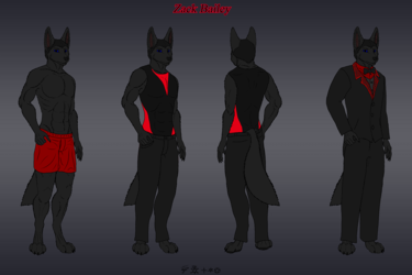 Character Reference Sheet ~ Zack