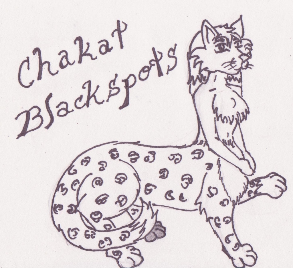 Chakat Blackspots by HollyFox