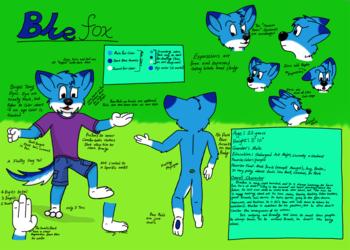 Bluefox Reference Sheet