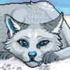 avatar of Kayxer