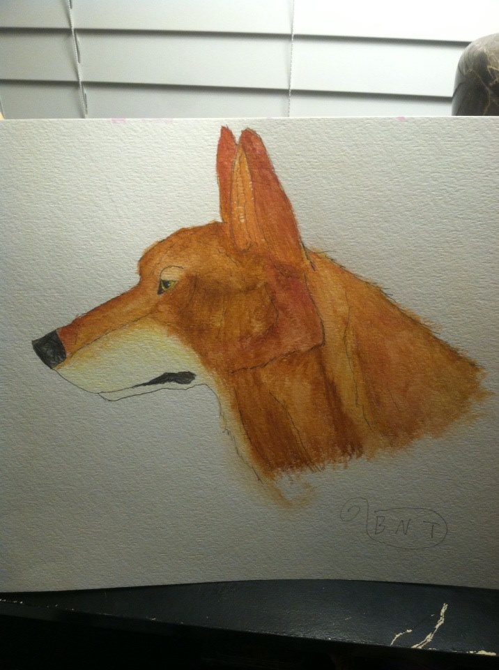Inked Watercolor Red Wolf