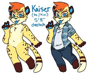 Kaiser ref