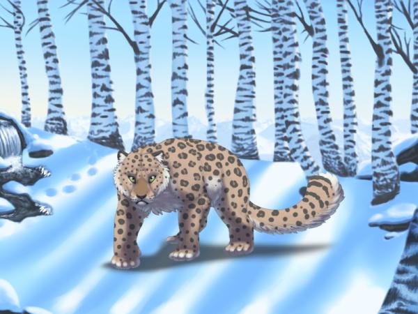Felis Pardus - Winter Forest Background