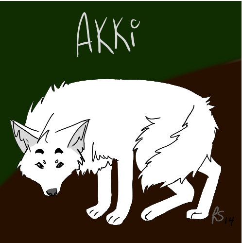 Most recent image: Akki