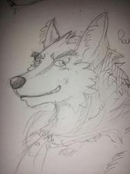 """Sketch for """"Barawolves"""" of Twitter bust"""