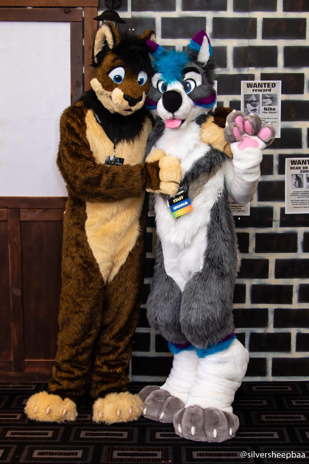 FurDU 2018: Jones Lion and Taubu's Husky