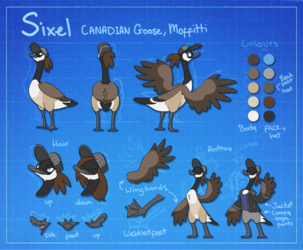 Sixel Reference Sheet 2016