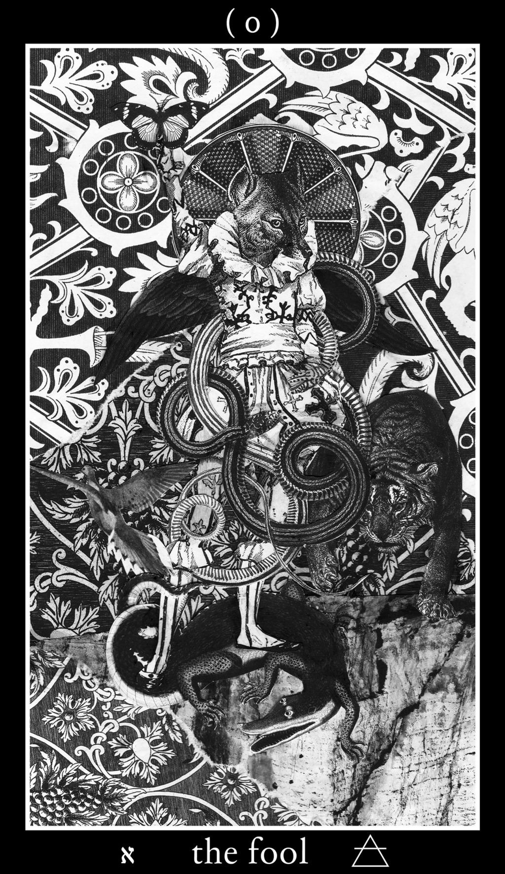 tarot - major arcana - the fool