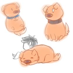 puppy cuddlin