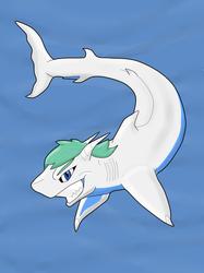 Sharkification: Taku