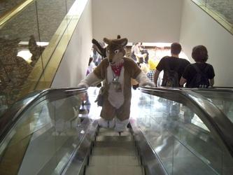 Escalator AC 2013