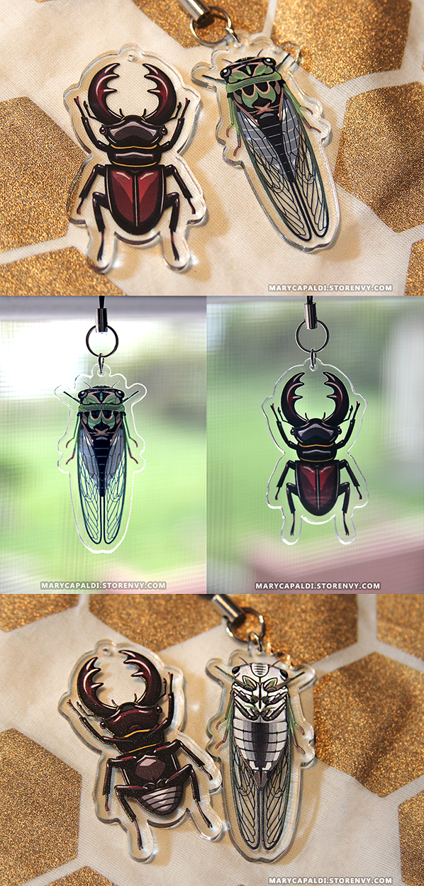 Cicada & Stag Beetle Charms ARE HERE!