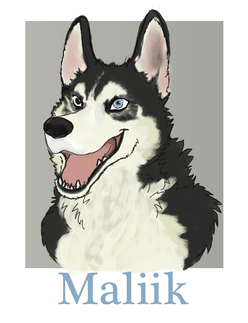 Most recent image: Maliik Badge Commission