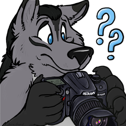 [ICON] How Do You Camera? (by Matrices)