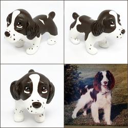 Lucy the English Springer Spaniel Pupple