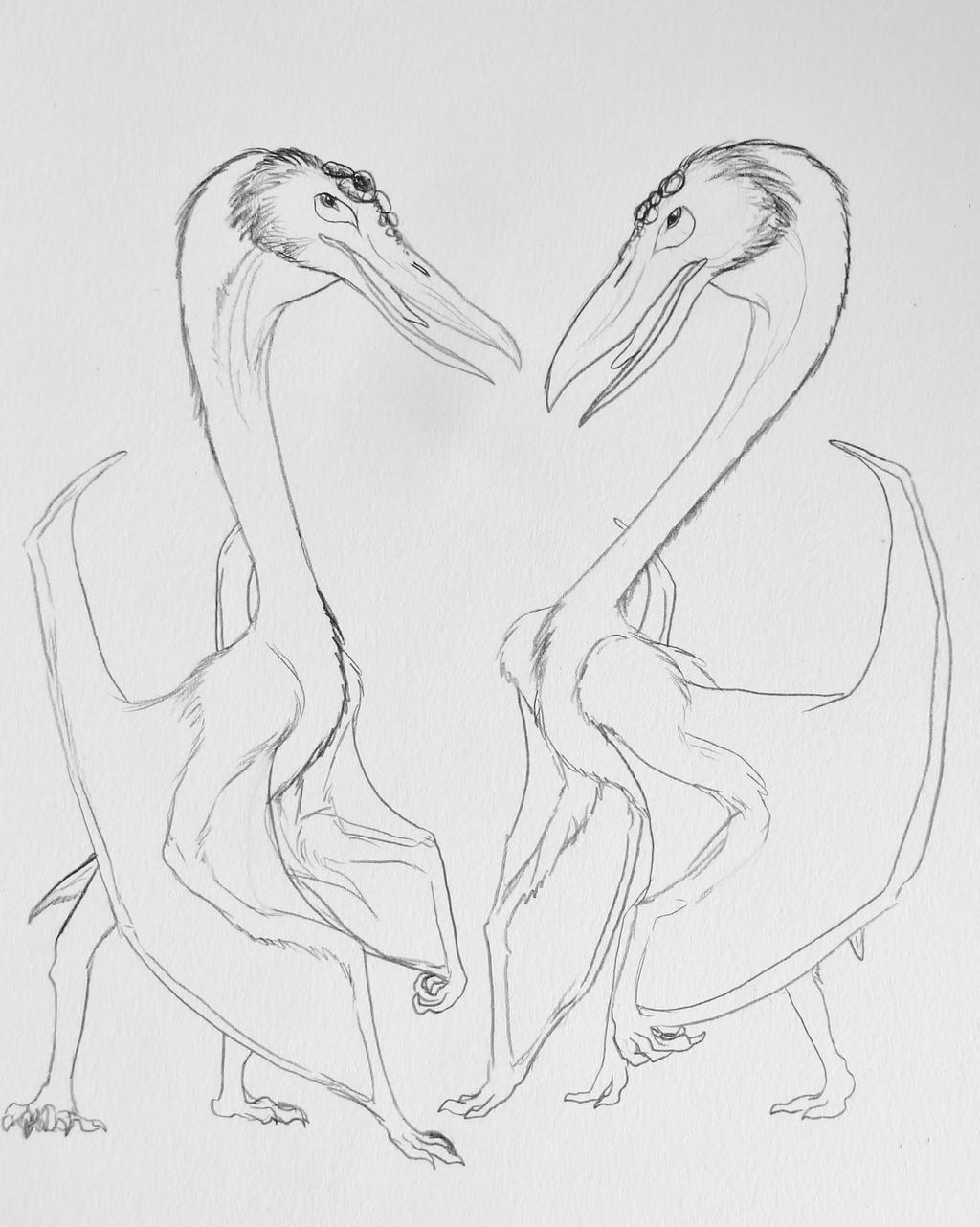 Azhdarchid Pair (sketch)