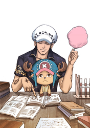 Trafalgar D. Water Law & Tony Tony Copper Cotton Candy #2