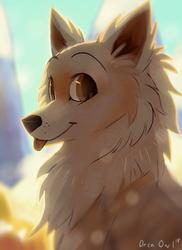 Yoshi Dog