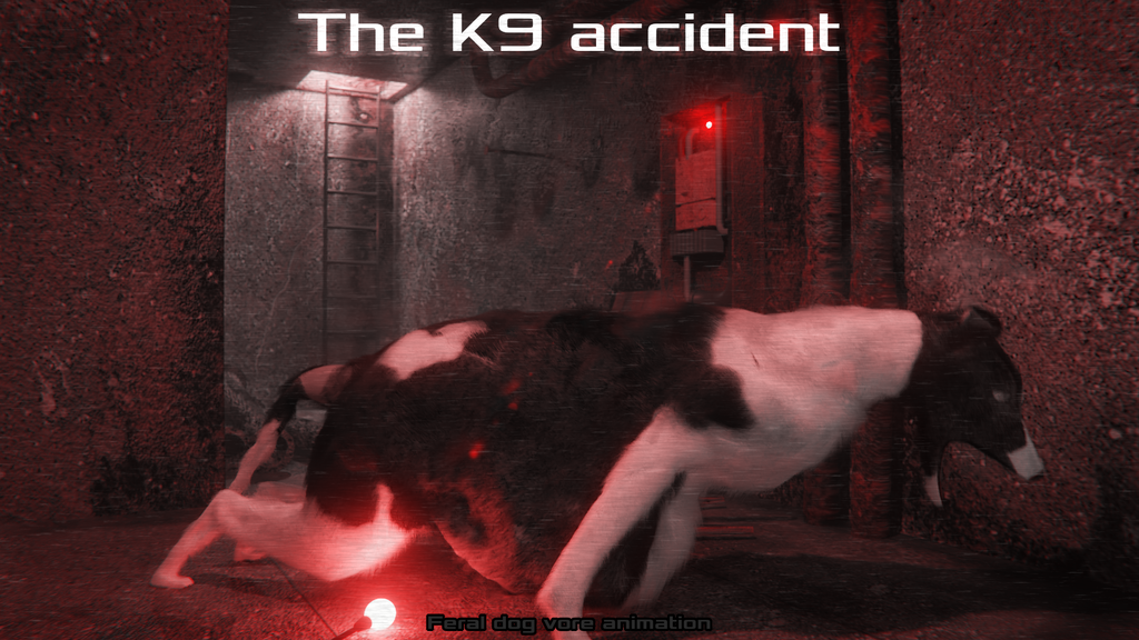 The K9 Accident