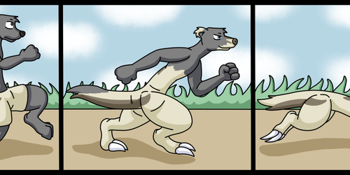 Fast Track Ferret